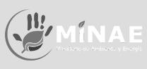 logo del minae